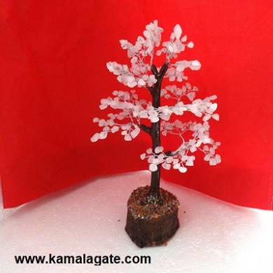 Tree Rose Quartz With Thick Roots